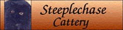 Steeplechase Cattery